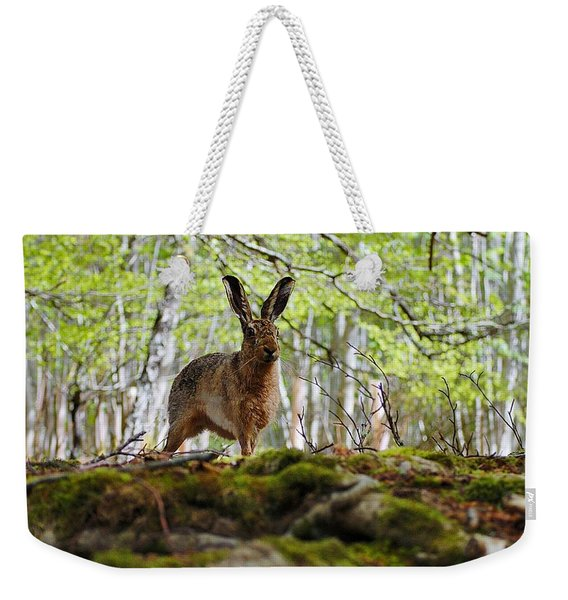 I'm All Ears Weekender Tote Bag