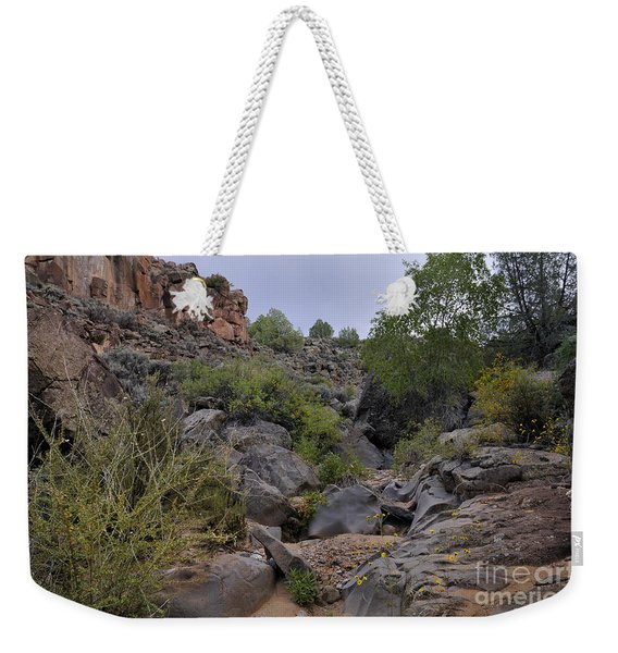 Weekender Tote Bag featuring the photograph In The Arroyo   by Ron Cline