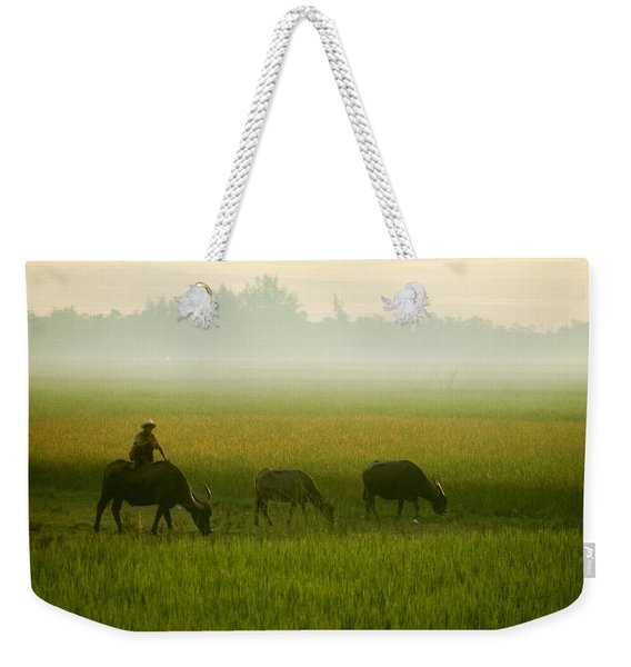 In The Light Of A Misty Early Morning Weekender Tote Bag