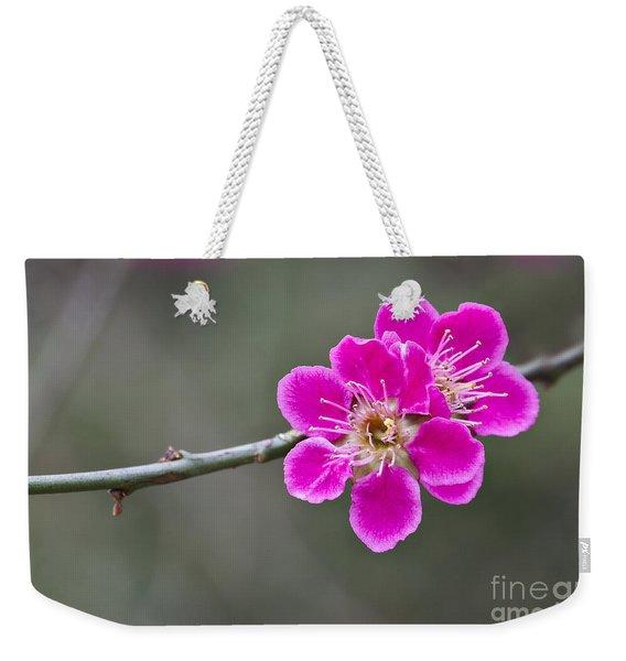 Japanese Flowering Apricot. Weekender Tote Bag