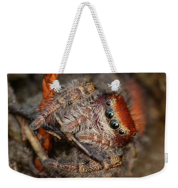 Jumping Spider Portrait Weekender Tote Bag