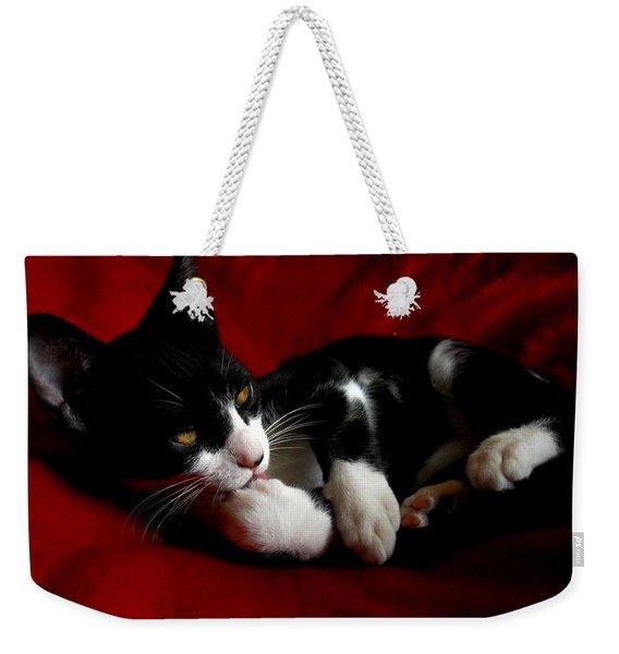 Kitten On Red Take Two Weekender Tote Bag