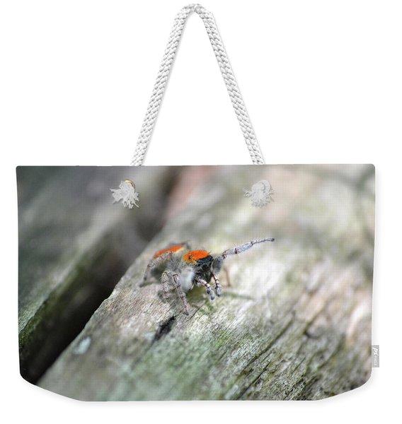 Little Jumper Weekender Tote Bag