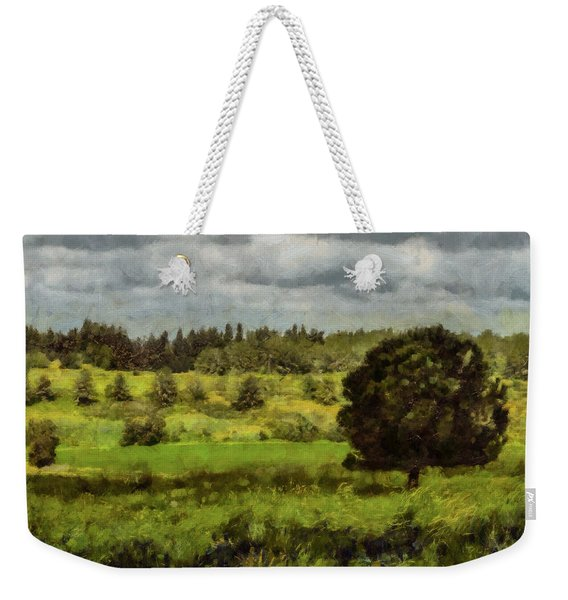 Weekender Tote Bag featuring the photograph Lonely Tree by Michael Goyberg