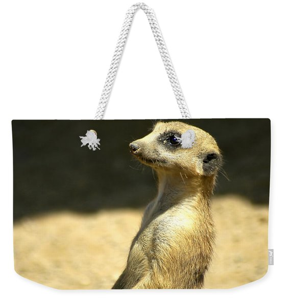 Weekender Tote Bag featuring the photograph Meerkat Mother And Baby by Carolyn Marshall