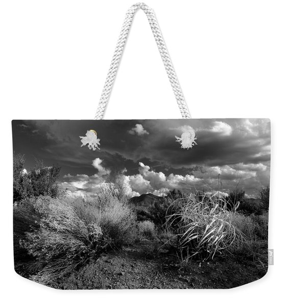 Weekender Tote Bag featuring the photograph Mesa Dreams by Ron Cline
