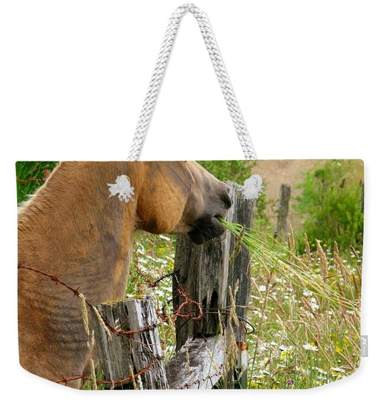 Munching On Daisies Weekender Tote Bag