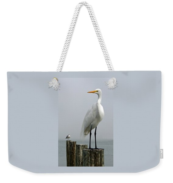 My Little Buddy Weekender Tote Bag