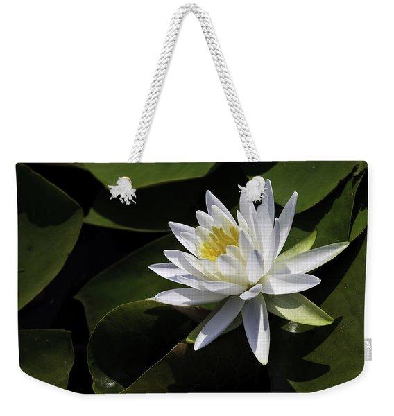 Nymphaea Marliacea 'albida' Weekender Tote Bag