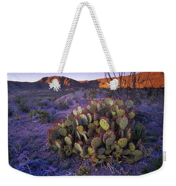 Opuntia Opuntia Sp In Chihuahuan Desert Weekender Tote Bag
