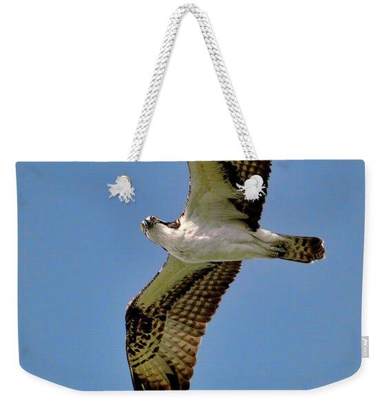Osprey Above Weekender Tote Bag