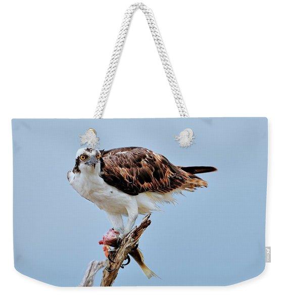 Osprey In The Morning Weekender Tote Bag