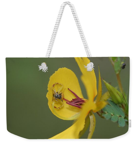 Partridge Pea And Matching Crab Spider With Prey Weekender Tote Bag