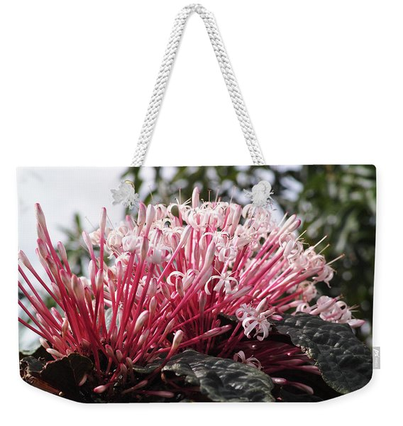Passion For Pink Weekender Tote Bag