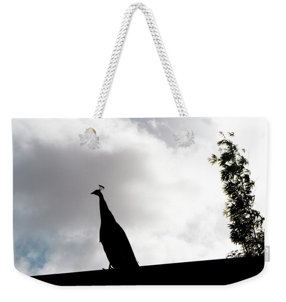 Weekender Tote Bag featuring the photograph Peacock Sentry by Lorraine Devon Wilke