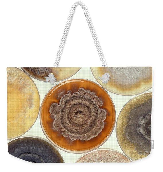 Phomopsis Mold Cultures Weekender Tote Bag