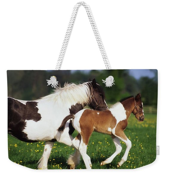 Piebald Mare And Foal Weekender Tote Bag