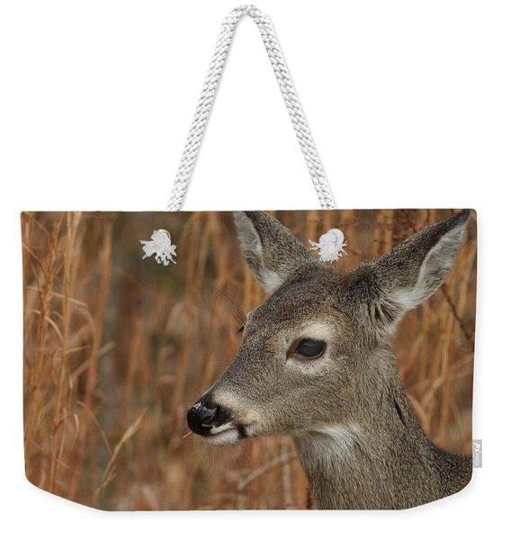 Portrait Of  Browsing Deer Weekender Tote Bag