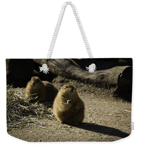 Prairie Dog Sees The Shadow Weekender Tote Bag