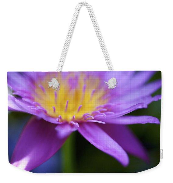 Purple Water Lily Petals Weekender Tote Bag