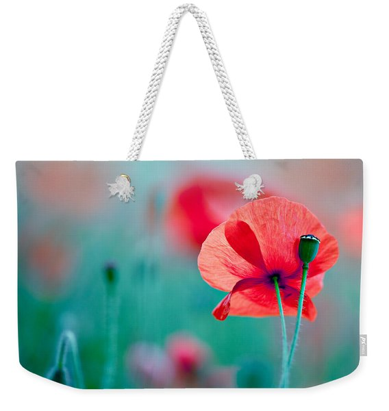 Red Corn Poppy Flowers 04 Weekender Tote Bag