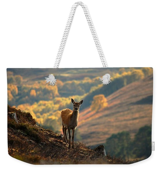 Red Deer Calf Weekender Tote Bag