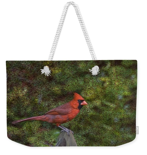 Red On The Fence Weekender Tote Bag