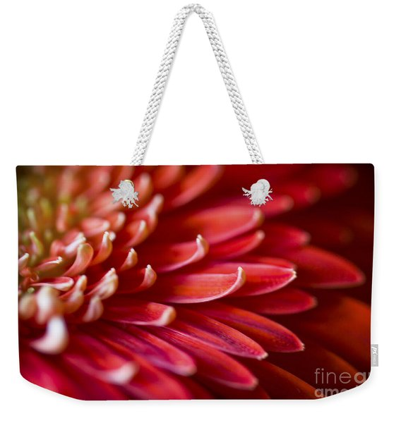 Red Petals Abstract 1 Weekender Tote Bag