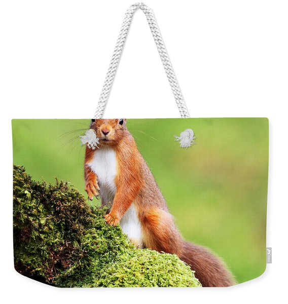 Red Squirrel Weekender Tote Bag