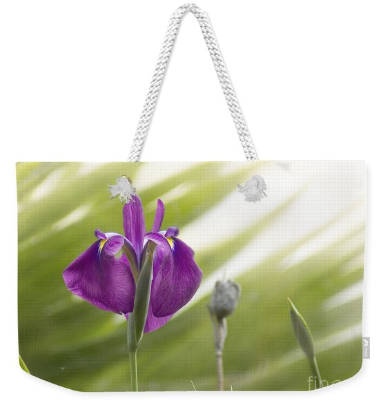 Purple Japanese Water Iris Weekender Tote Bag