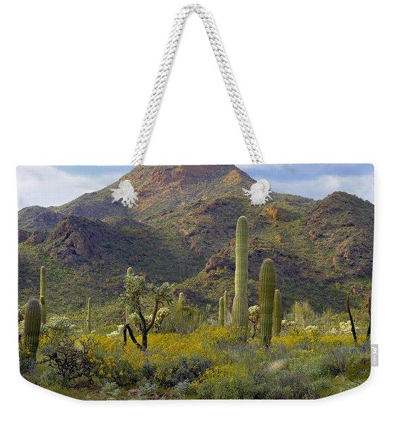 Saguaro And Teddybear Cholla Weekender Tote Bag