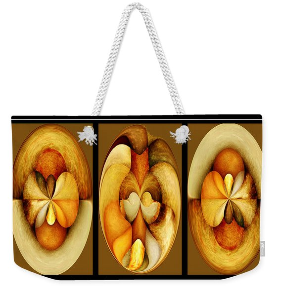 Sanded Woods Triptych Dark Weekender Tote Bag