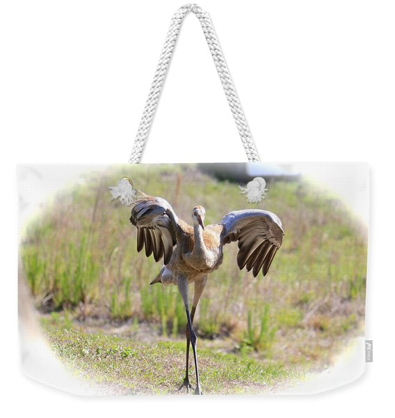 Silly Sandhill Crane Chick Weekender Tote Bag