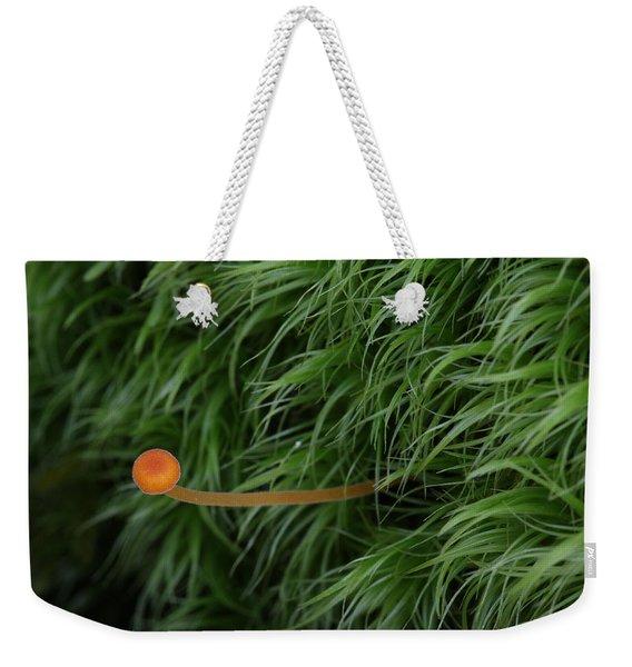 Small Orange Mushroom In Moss Weekender Tote Bag