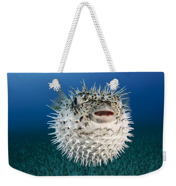 Spotted Porcupinefish IIi Weekender Tote Bag
