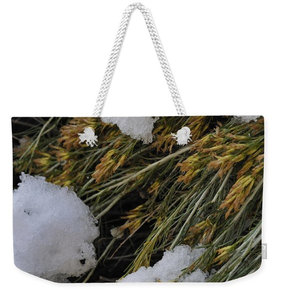 Weekender Tote Bag featuring the photograph Spring Arrives by Ron Cline