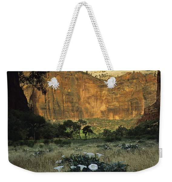 Spring At Big Bend Weekender Tote Bag