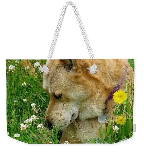 Stop And Smell The Clover Weekender Tote Bag