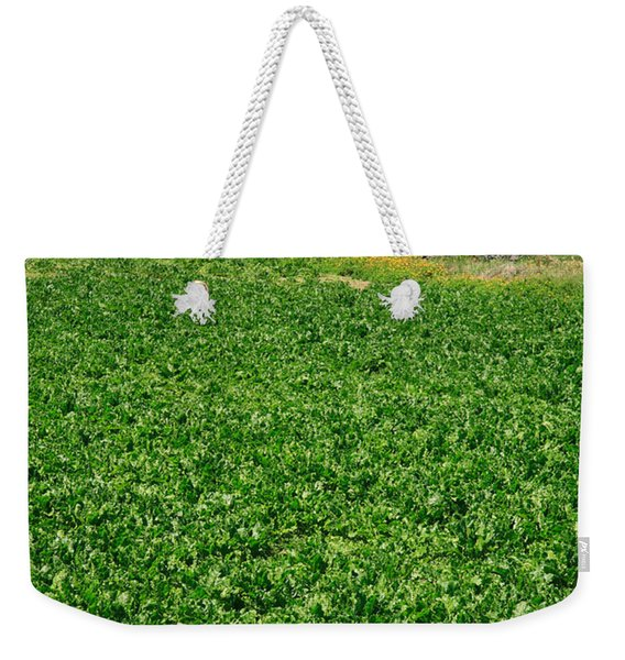 Sugarbeet Field Weekender Tote Bag