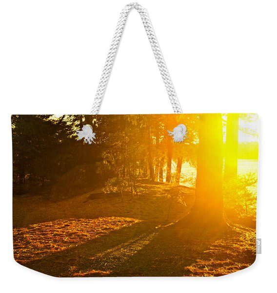 Sunshine In Evening Forest Near Lake Weekender Tote Bag