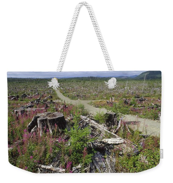 Temperate Rainforest Clear Cutting Weekender Tote Bag