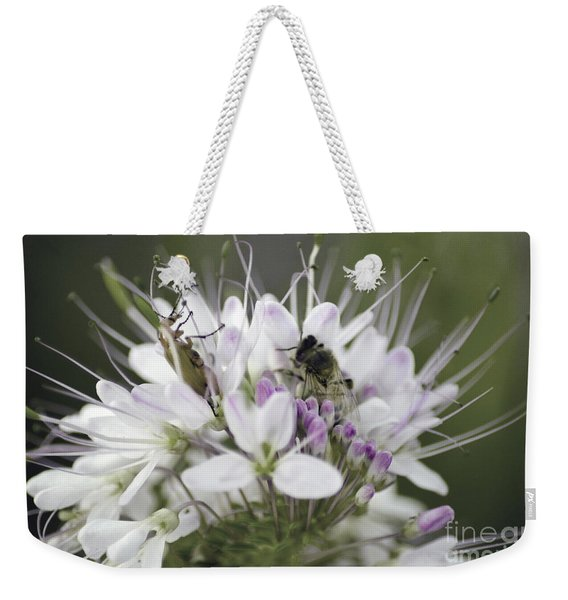 The Beetle And The Bee Weekender Tote Bag