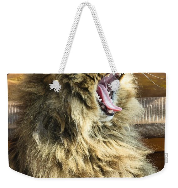The Cat Who Loves To Sing Weekender Tote Bag