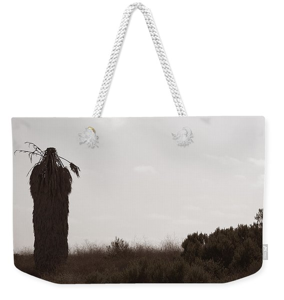 Weekender Tote Bag featuring the photograph The Chief by Lorraine Devon Wilke