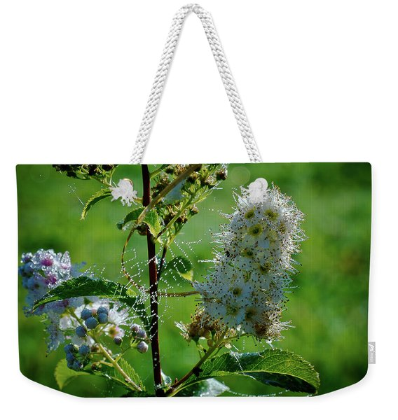 Weekender Tote Bag featuring the photograph The Glass Bead Game by Michael Goyberg