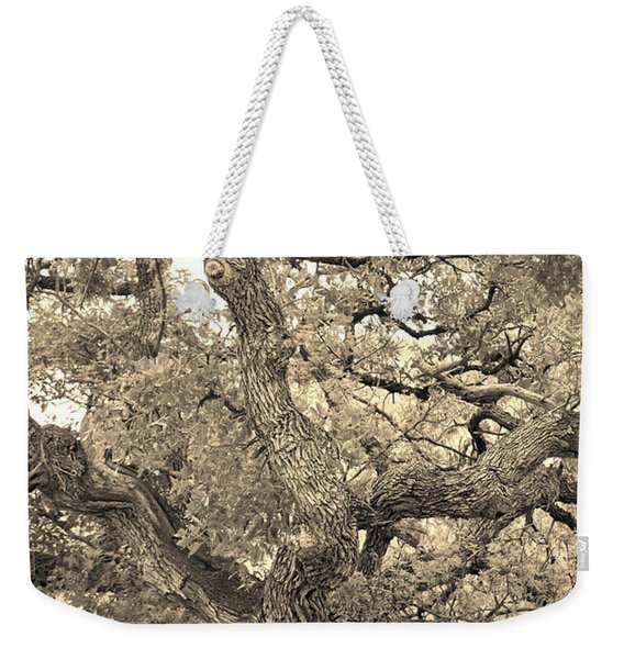The Wicked Tree Weekender Tote Bag
