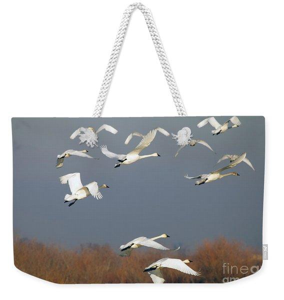 Tundra Swan Takeoff Weekender Tote Bag
