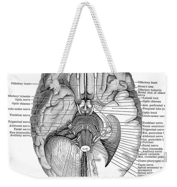 Undersurface Of The Brain Weekender Tote Bag
