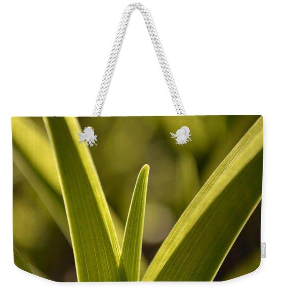 Variegated Light 1 Weekender Tote Bag