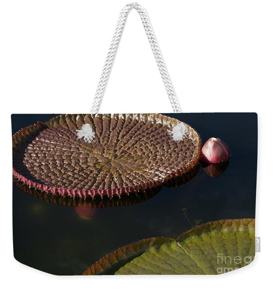 Victoria Amazonica Leaves Weekender Tote Bag